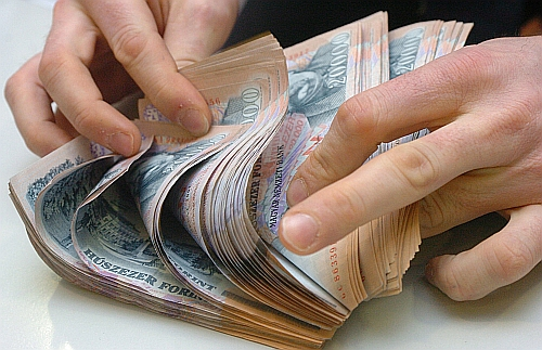 A devizahiteleseknek, akik a napi fizetésképtelenség problémájával szembesülnek nagy segítséget jelenthet számukra az állam által felkínált árfolyam rögzítés, vagy a bankjuk által kidolgozott mentő csomag.