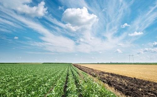 Fontos a versenyképesség erősítése az agrárszektorban is