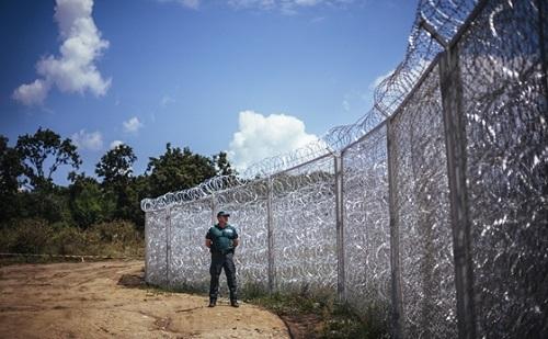 Intenzív nyomás alatt tartják a migránsok a magyar-szerb határt