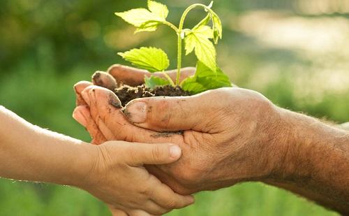 Ismét környezetvédelmi programot hirdet a Mol