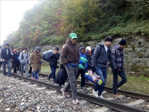 Ausztria meghatározta mennyi migránst fogad be