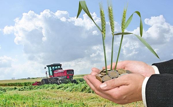 Agrártámogatási kérelmek benyújtása április 7. és május 15. között