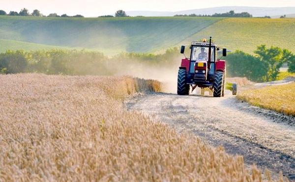 Támogatások és kedvező hitelkonstrukciók is segítik a gazdálkodókat