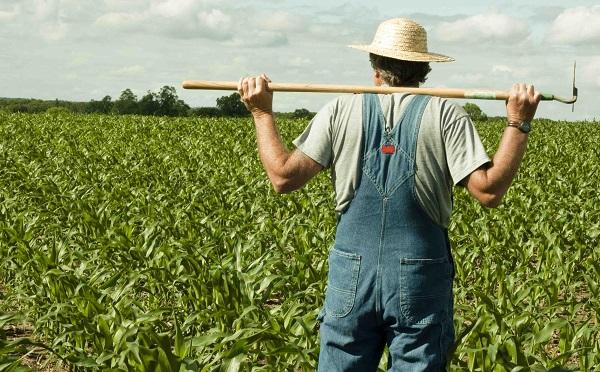 Új agrárpolitika 2020-tól