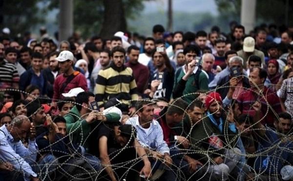 Idén 2300 bevándorlót utasítottak ki Ausztriából