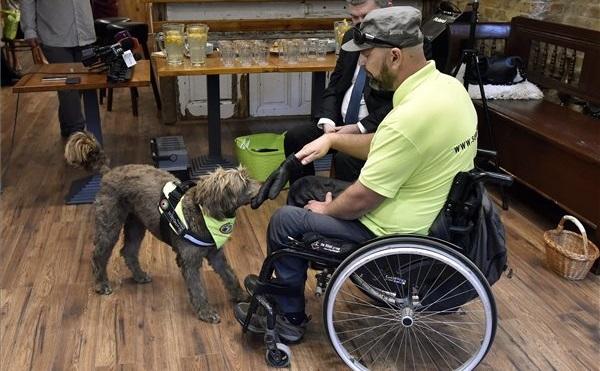 Újabb pályázat a fogyatékkal élők segítésére
