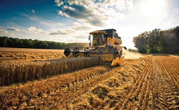 A mezőgazdaságnak is szüksége van technológiai fejlődésre
