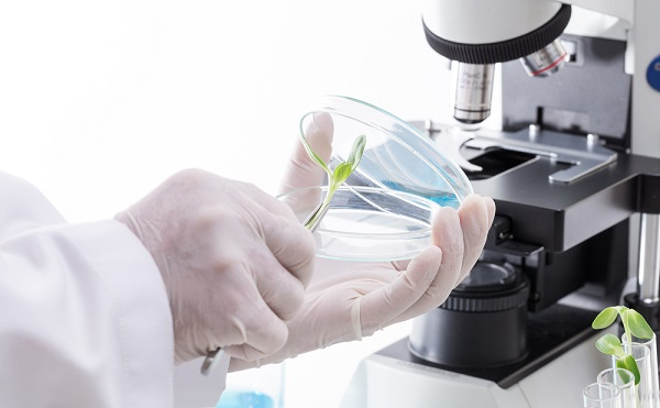 Több mint 11,5 milliárd forint támogatást nyert 400 kutató és projekt NKFIH programjaiban