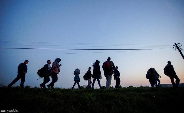 Ősszel újabb migrációs hullám indulhat meg