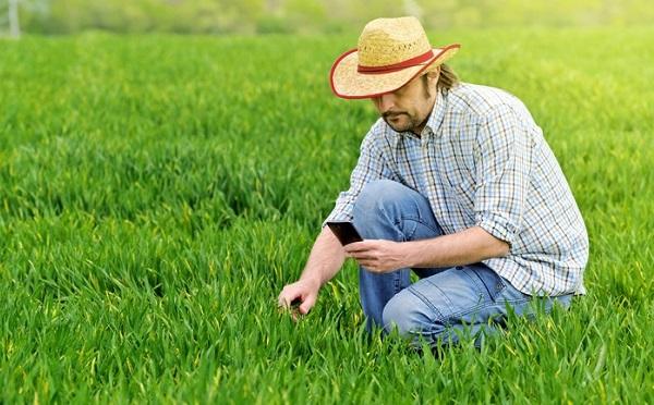 Program keretében növelik a kárpát-medencei falugazdászok számát