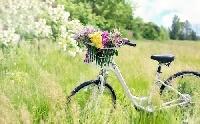 Biciklist ütöttek el