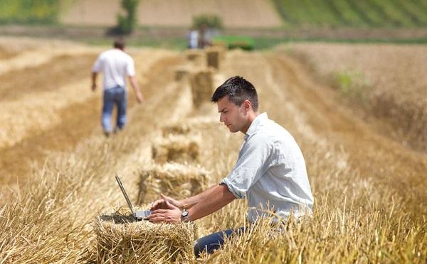 Felértékelődik a mezőgazdaság