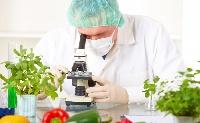 Új élelmiszertechnológia megoldásokat fejlesztenek
