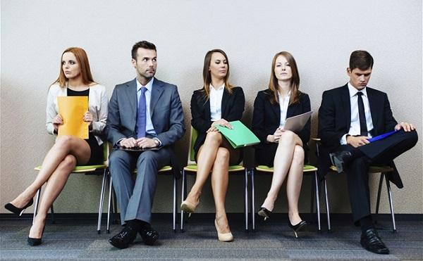 Pályázat nyílt fiataloknak munkatapasztalatra