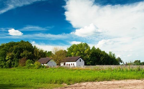 Új vidékfejlesztési pályázatok jelentek meg