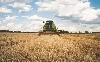 Rekordot érhet el az agrárium
