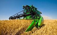 Idén új hitelprogram indulhat az agrárvállalkozások fejlesztésére