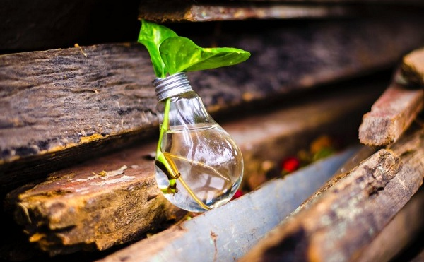 Innovációs ötletverseny indul a mezőgazdaság területén