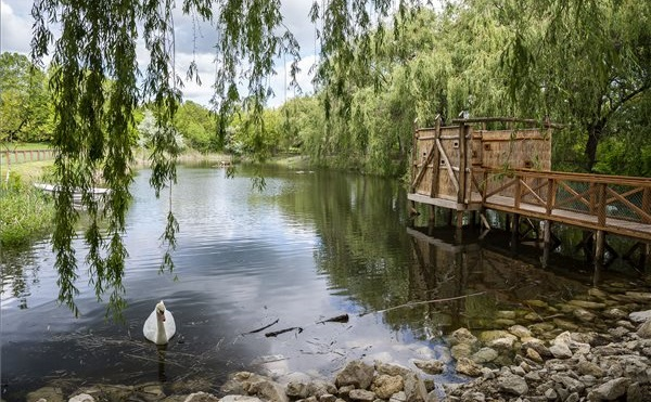 Átadták a Pákozd-Sukorói arborétum és vadaspark legújabb fejlesztéseit