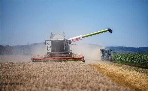Megkezdődött az aratás