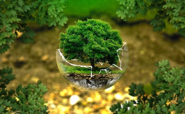 Átfogó környezetvédelmi intézkedéscsomagot jelentett be a holland kormány