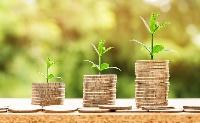 Zöldkötvény-portfóliót hoz létre a devizatartalékban az MNB
