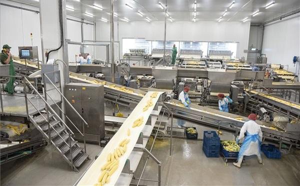 Átadták az AgroSprint Zrt. új gyáregységét