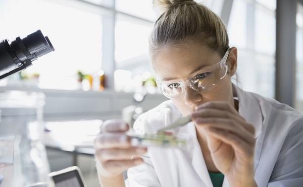 25 százalékkal nő a kutatási és a fejlesztési tevékenység állami támogatása