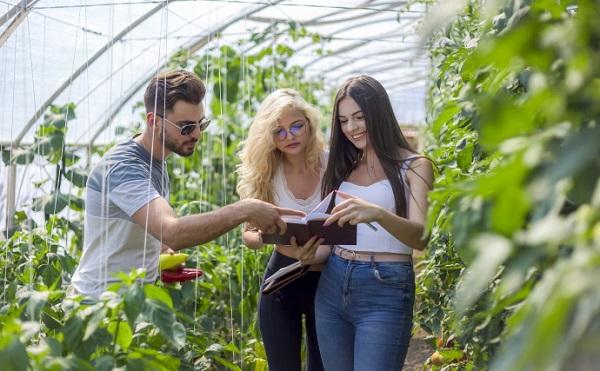 Kezdődik az agrár-felsőoktatás integrációja