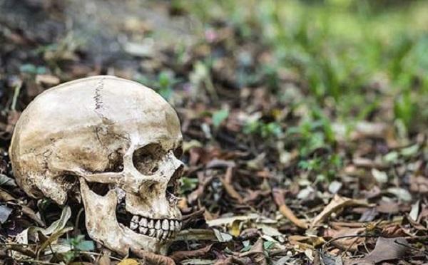 Emberi csontmaradványokat találtak Szántódpusztánál