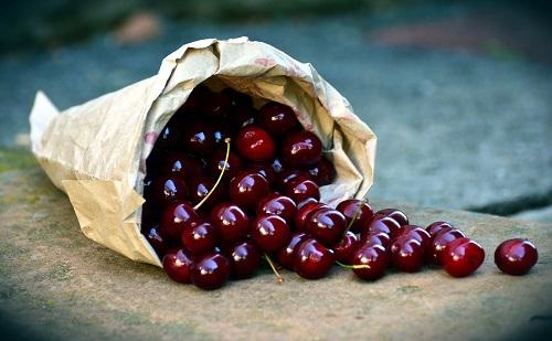 Élelmiszeripari kisvállalkozásoknak hirdettek pályázatot