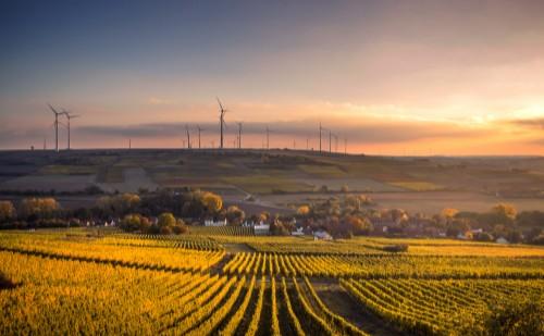 A Digitális Agrár Stratégiával fejlesztik a mezőgazdaságot