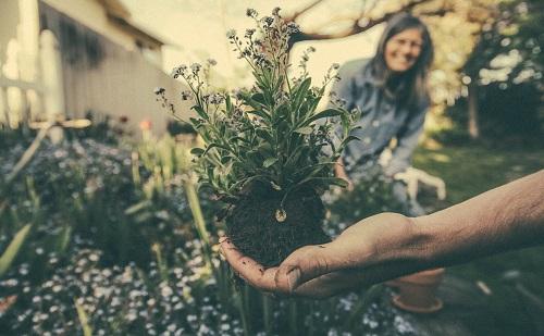 Az ökológiai gazdálkodásban van a jövő