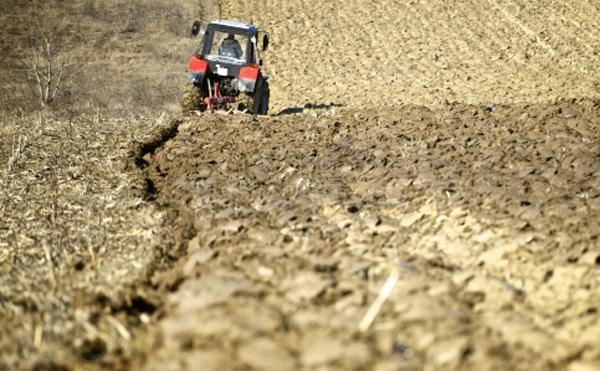 Még lehet pályázni a földprogramra