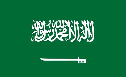 Magyarország atomenergetikai szaktudásával támogatja Szaúd-Arábiát