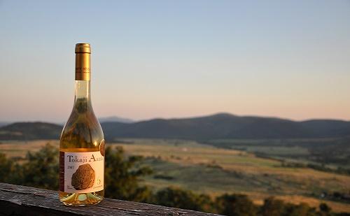 Betörhetnek a magyar borok a japán piacra